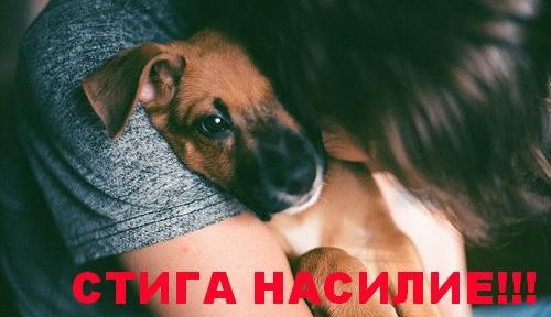 Тополово, влаченото куче, убито куче, закон за насилие над кучета